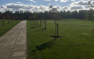 HCE Group Tree Sponsor Landscape